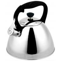 Чайник металлический Rainstahl RS-7694-35 3.5 л